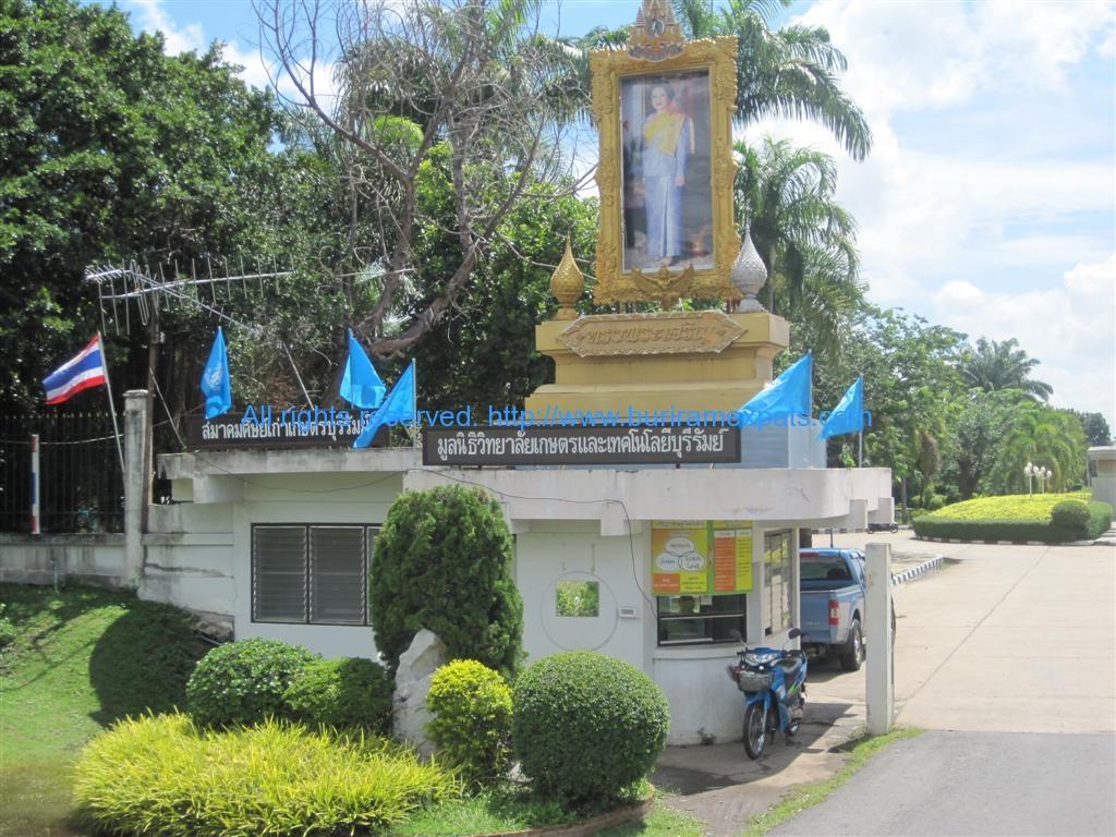 agriculture-college-buriram-thailand1