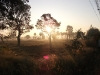 village-life-buriram1