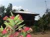 village-life-buriram4